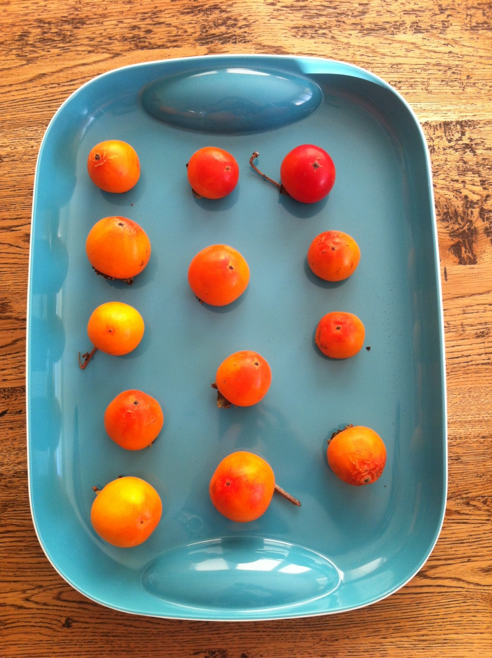 Persimmons ripening on a tray